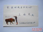 24开信封:斗牛士 天津市印刷纸制品厂