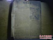 报纸 科学小报1958 全年合订