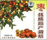 枣树种植技术视频,灰枣种植及修剪技术