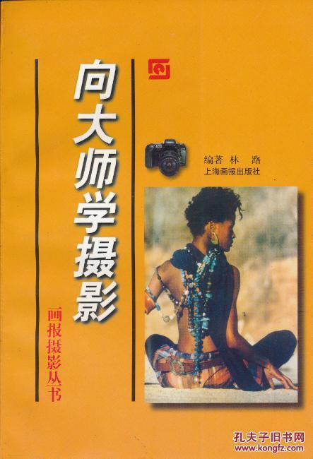 画报摄影丛书:向大师学摄影