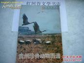 贵州珍贵动物图谱(前有8页彩图、16开本, 每一种动物都配了图)