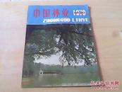中国林业1979年 试刊