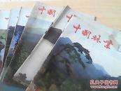 中国林业1980全年1-12期(少第4期) 11本合售