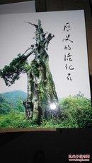 历史的活化石----绍兴古树名木
