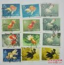 1960年金鱼邮票   12枚