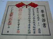 1953年毕业证书