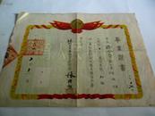 解放初期1954年毕业证