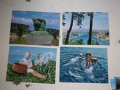 日本明信片:国立公园11 张