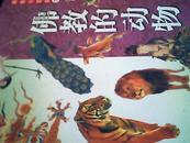 佛教的动物 佛教小百科 插图版 仓库号Z50