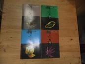 咬文嚼字 2000年第8、9、10、12期 4本合售