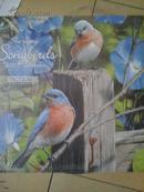 Songbirds 2015calendar