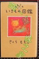 日版樱桃子生物图鉴 樱桃小丸子的作者