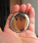 天然缠丝玛瑙象形图案圆牌手把件挂件礼品收藏品:红萝卜先生