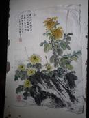 宣纸水墨画   菊花