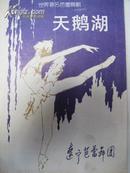 芭蕾舞:天鹅湖(辽宁芭蕾舞团)