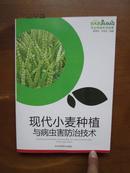 农业种植系列读物——现代小麦种植与病虫害防治技术