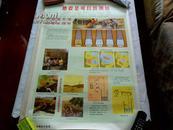 文革宣传画.地震知识挂图[8张一套]孔网孤品硬纸【保真】