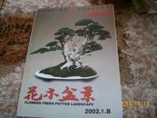花木盆景-盆景赏石杂志2002-1-B