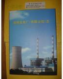 淮阴发电厂(有限公司)志 (1988 -2010 )
