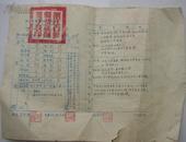 1953年浙江省鄞县初级师范成绩单