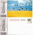 美在黑龙江(2011)黑龙江著名景区邮资明信片-江河湖泊湿地类(13张)