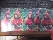 明信片 《 猴子探长》南昌市邮政局2