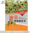 油茶树种植书  茶油树栽培书 种茶子树书 油茶种植新技术