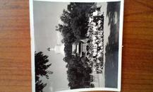 老照片 1958年北京北海留念