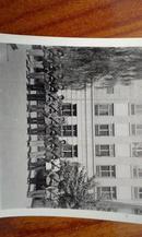 老照片 1960年北京设计院民兵操练