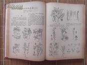 1978年期刊《赤脚医生杂志》1-----12期 12册合订为一厚册