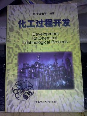 化工过程开发/于遵宏等