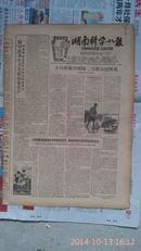湖南科学小报1959年11月7日111期