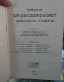 Endocrinology 内分泌学 馆藏(英文版)