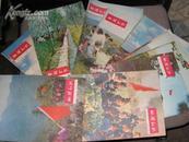 地理知 识1976年  共计11册  11本缺少9