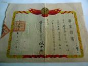 解放初期 1954年毕业证