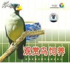 观赏鸟养殖技术大全,如何饲养管理观赏鸟