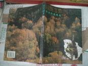 陕西旅游指南 (兵马俑发现者杨志发签名 )98年1版1印5000册