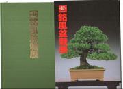 第67回 铭风盆栽展图录 杭州现货