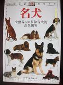 名犬-全世界300多种名犬的彩色图鉴(自然珍藏图鉴丛书)