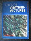 13)《山东羽毛画》 约七十年代末八十年代初工艺品进出口商品画册
