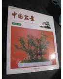 中国盆景 内含简史、类别、基本技艺、制作以及几架配置等、20开本铜版彩印