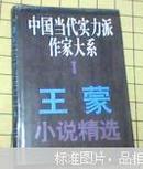 王蒙小说精选