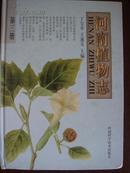 河南植物志(第三册)(库存多,可批发)