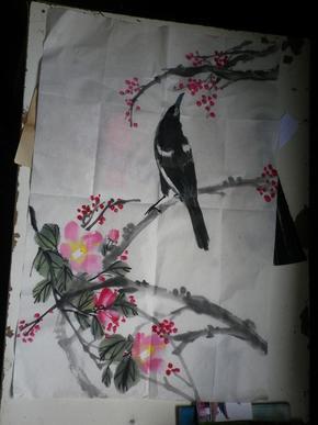 无款    花卉画稿2张