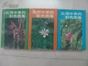实用中草药彩色图集 1-3