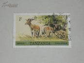 外国邮票1张   野羚羊