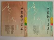 中国钢笔书法(1991第二期、第六期)