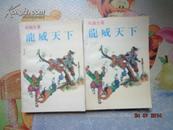 龙威天下(上下全两册)