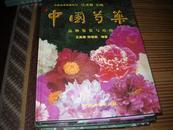 中国芍药【铁架2层】签名不识款