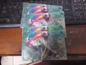 明信片 《 猴子探长》南昌市邮政局1